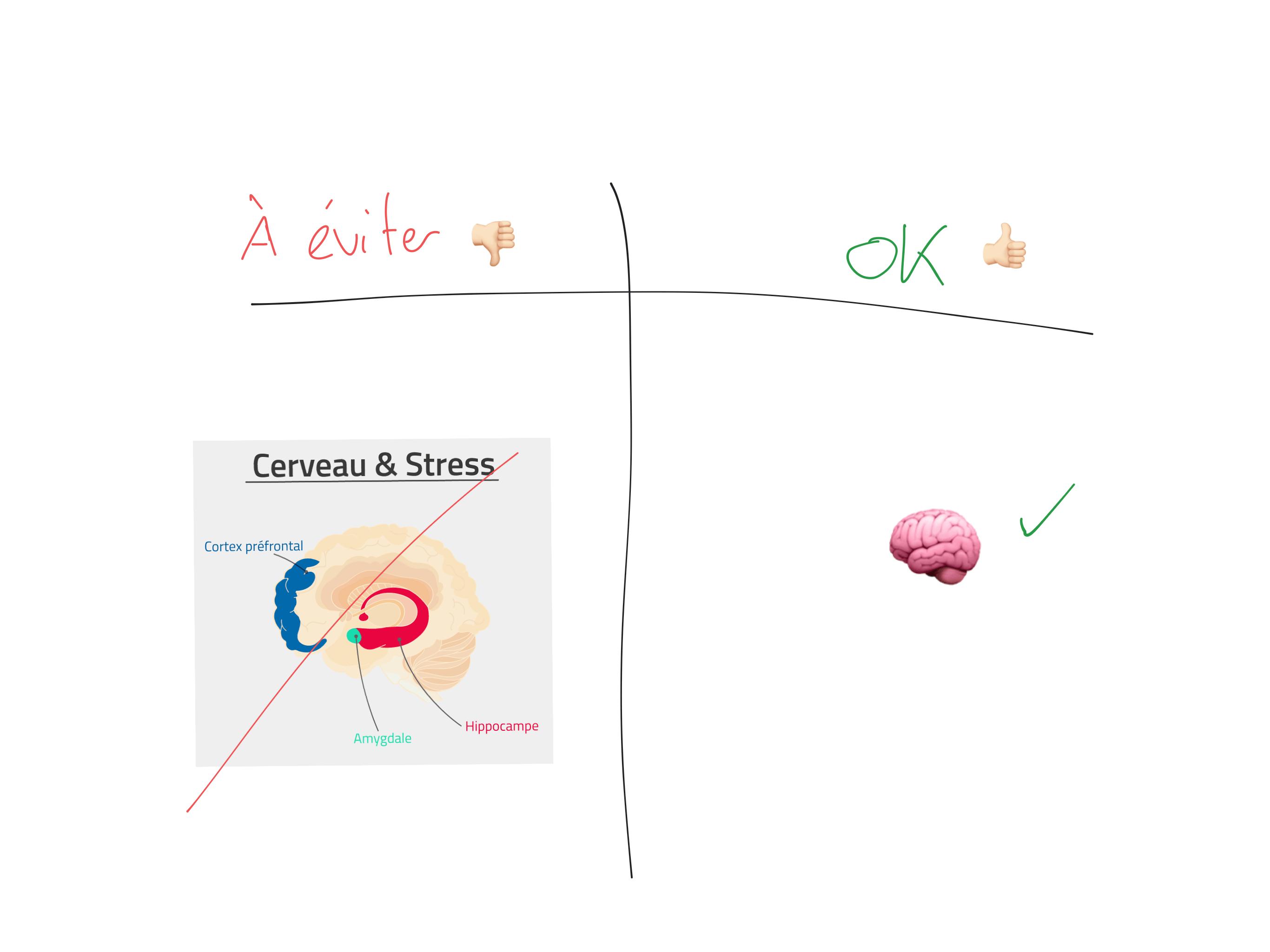 Image simple