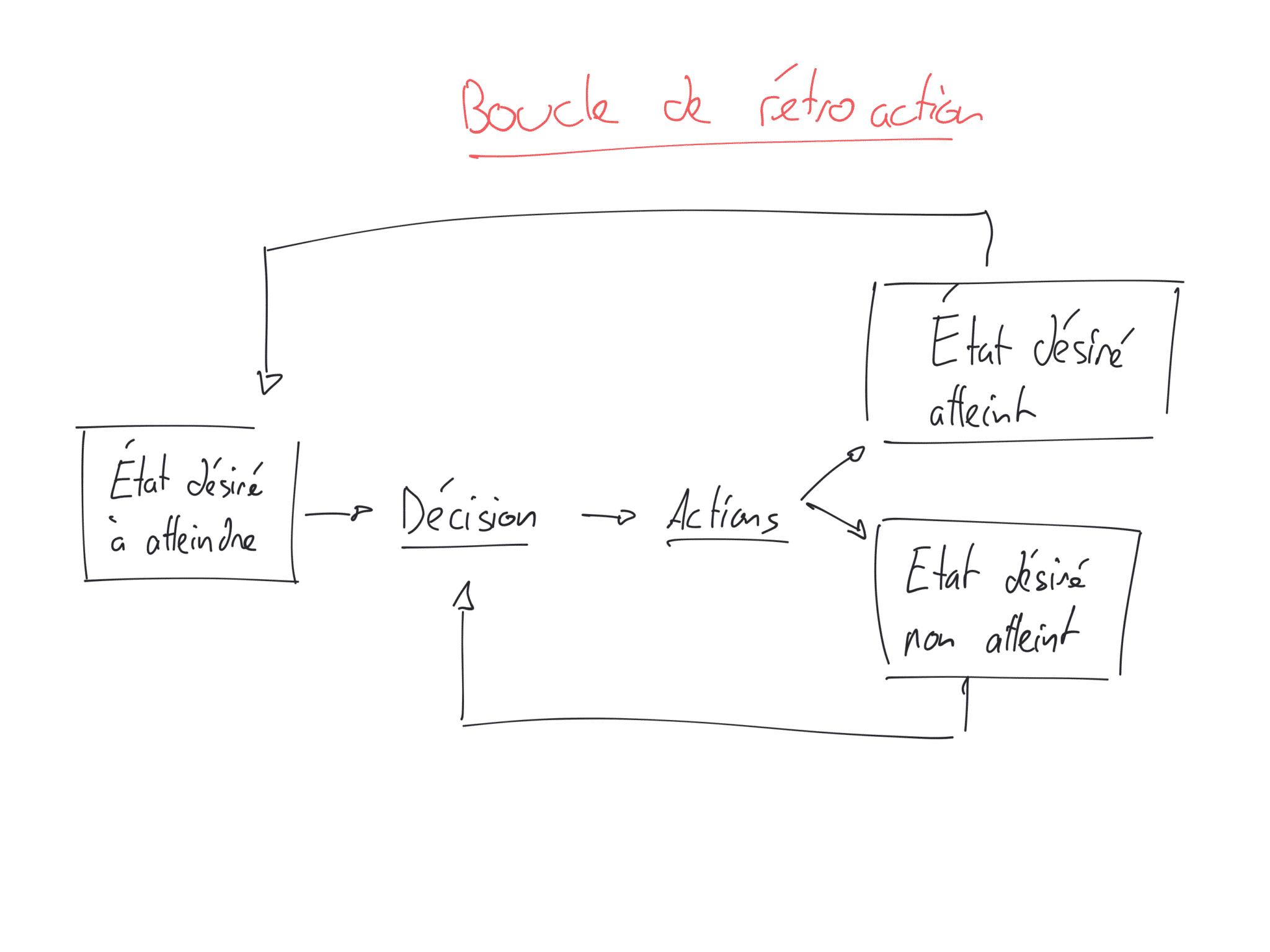 feed-back systémique