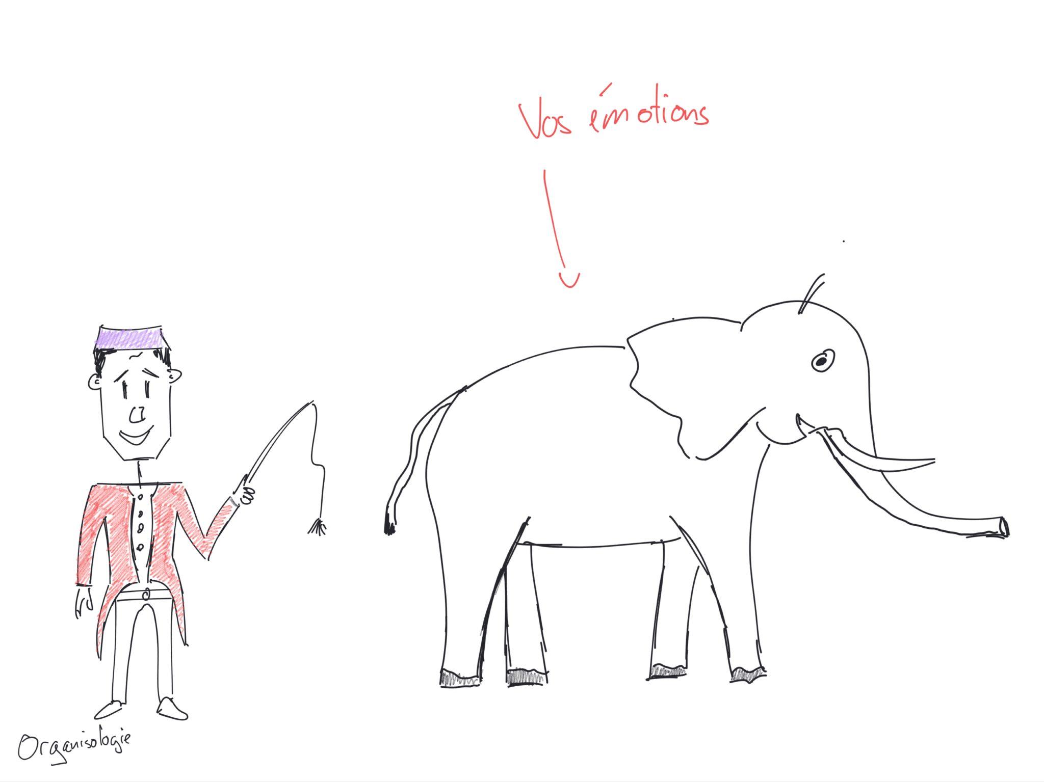 dompteur et éléphant pour lâcher prise